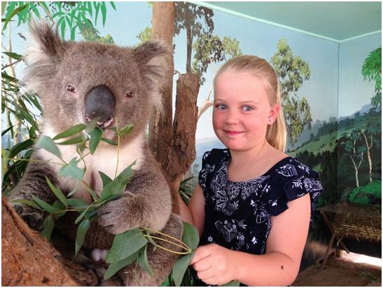 Maru Koala and Animal Park tour