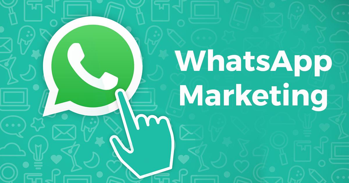 Bulk WhatsApp software