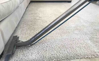 Clean Carpet Without A Steam Cleaner